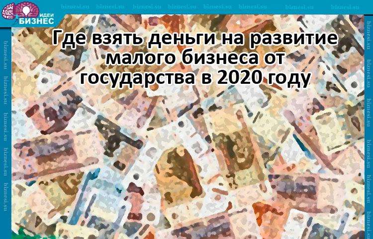 Где взять деньги на развитие малого бизнеса от государства в 2020 году