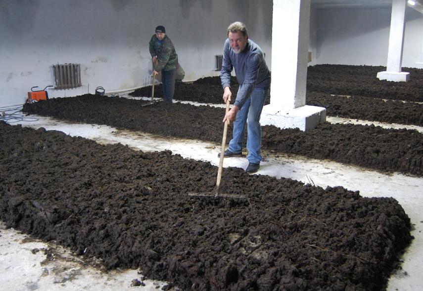 Как заработать на продажах биогумуса