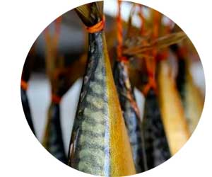 Копчение рыба как бизнес