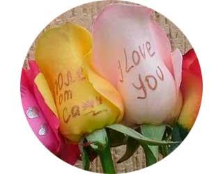 Нанесение надписей на цветы