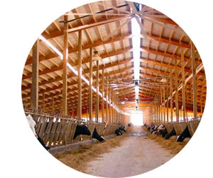 Что нужно для организации фермы