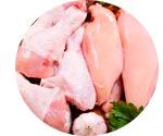 Птичье мясо