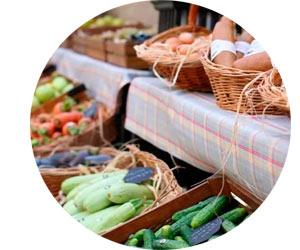 Рынок сбыта продукции фермерского хозяйства