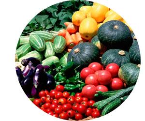 Выращивание овощей и фруктов